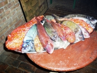 <strong>Fresh fish - Vila Kaliopa</strong> | views: 30
