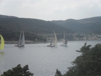 views: 1568